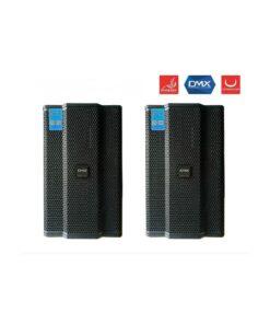 DMX DS-12