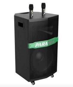 PARAMAX GO-300NEW
